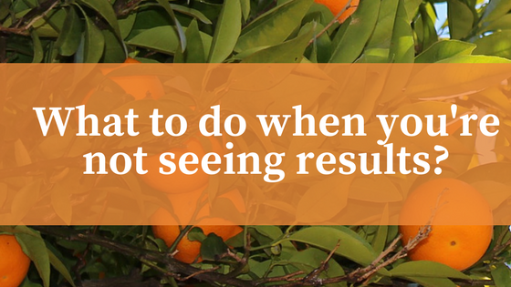 What-to-do-when-youre-not-seeing-results?